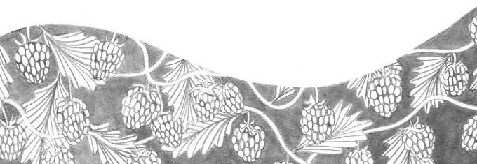 rasberries-1.jpg